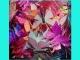 Бабочка-украшение на мет/зажиме 7*5см (упак.100шт) №1